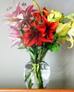 Fresh Lilies